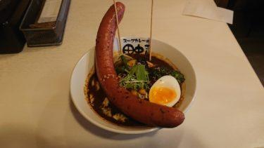 スープカレーの田中さんの14種類の野菜とメガフランクスープカレー